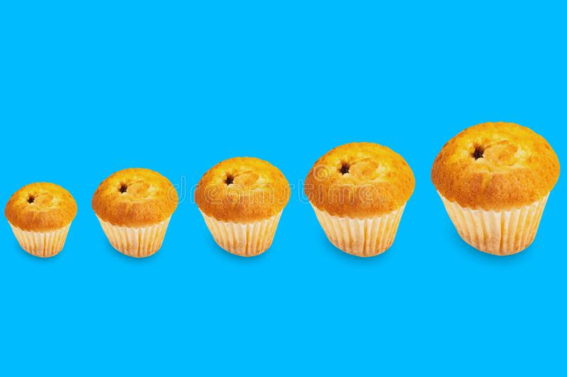 Reihe von gebackenen Muffins ohne Creme in der Papierform von kleinem zu großem lizenzfreie stockbilder