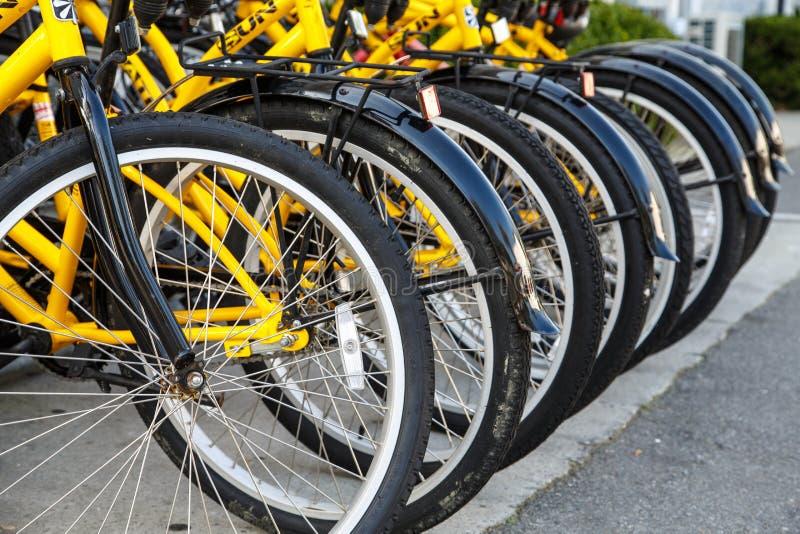 Reihe von gelben Fahrrädern stockfoto