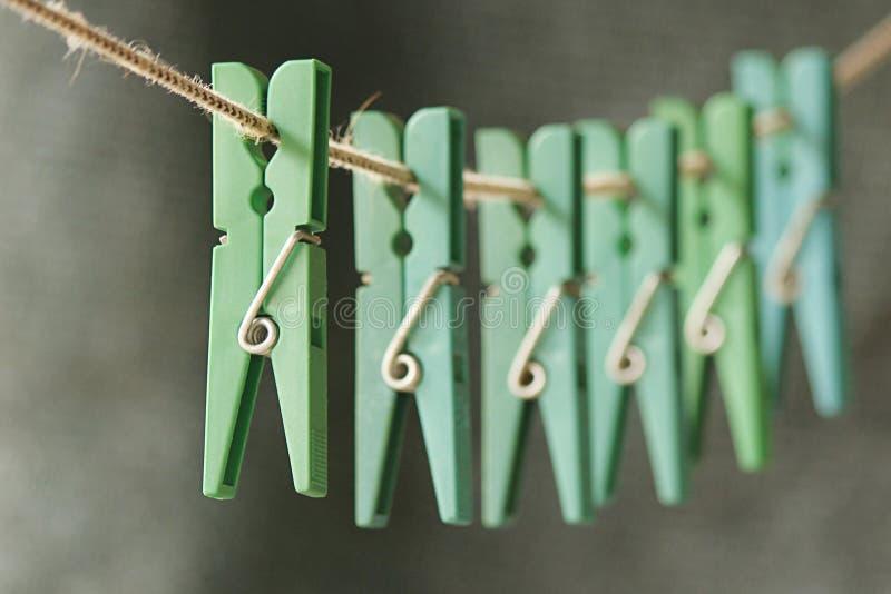Reihe von grünen Broschen stockbilder