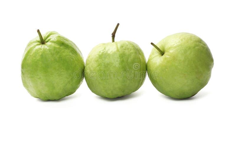 Reihe von Guajava-Früchte lizenzfreie stockfotos