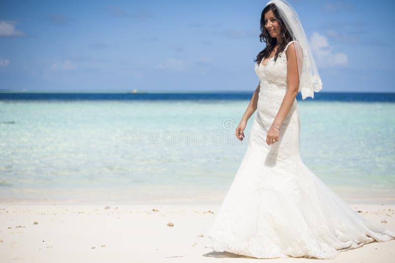 Reihe von Malediven stockbilder