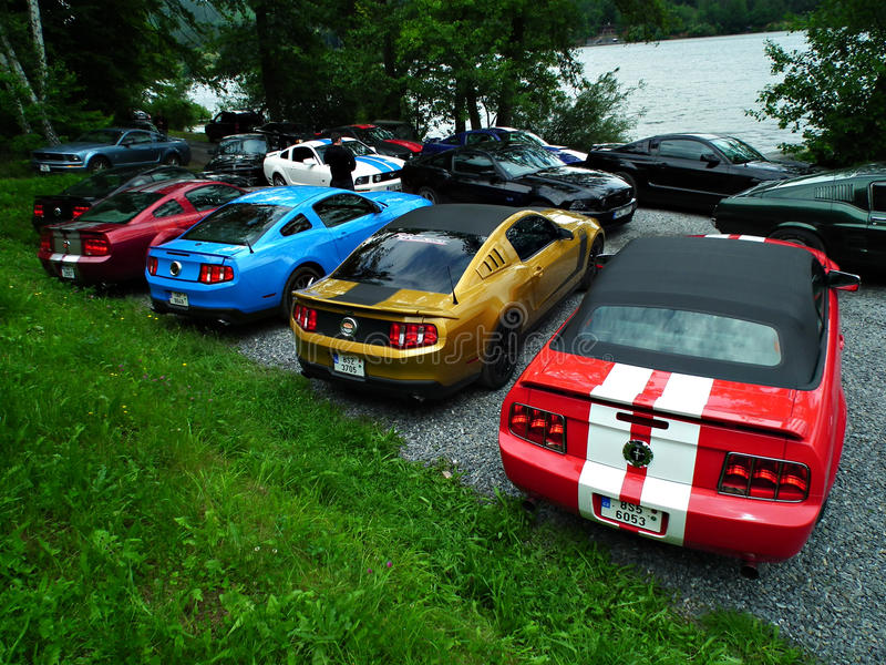 Reihe von Mustangs lizenzfreies stockfoto