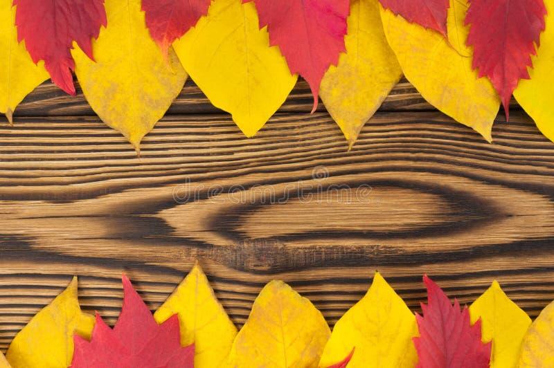 Reihe zwei von gefallenen gelben und roten Blättern des Herbstes auf altem abgenutztem rustikalem braunem Holztisch stockbild