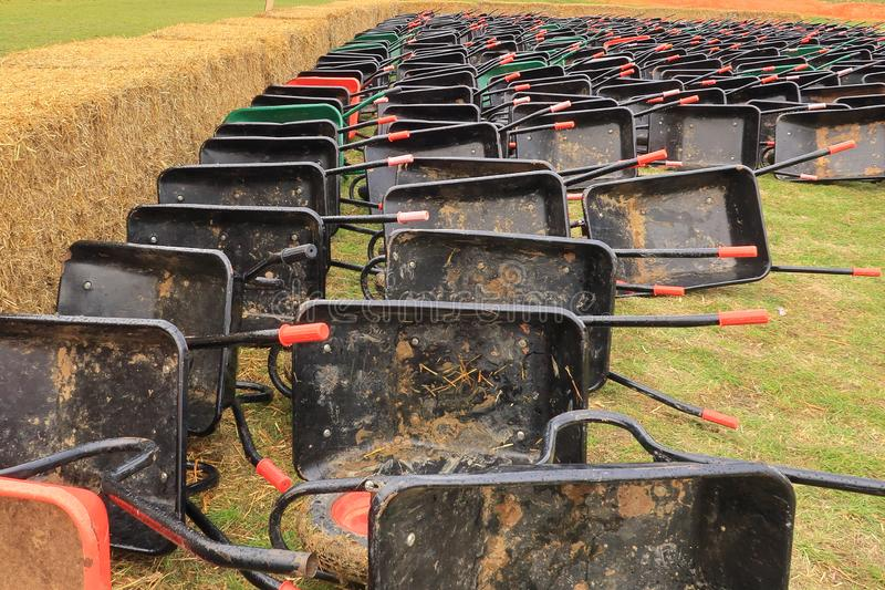 Reihen von den Schubkarren bereit zur Ernte von Kürbisen stockbild