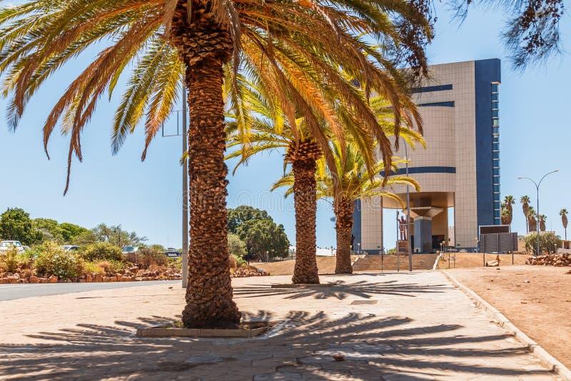 Reihen von Palmen und von modernem Gebäude auf der zentralen Straße von lizenzfreies stockbild