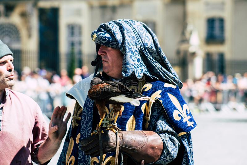 Colors of France. Reims France June 2, 2019 Closeup of a falconer and a raptor participating in a falconry show in the streets of Reims in the afternoon stock image