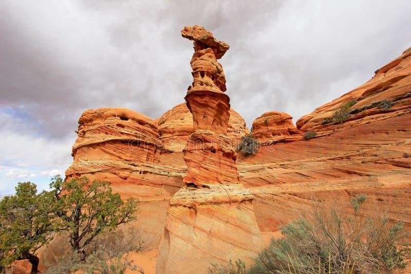 Reina del ajedrez, una formación de roca cerca de la onda en las motas CBS del sur, desierto bermellón del coyote de los acantila imagenes de archivo