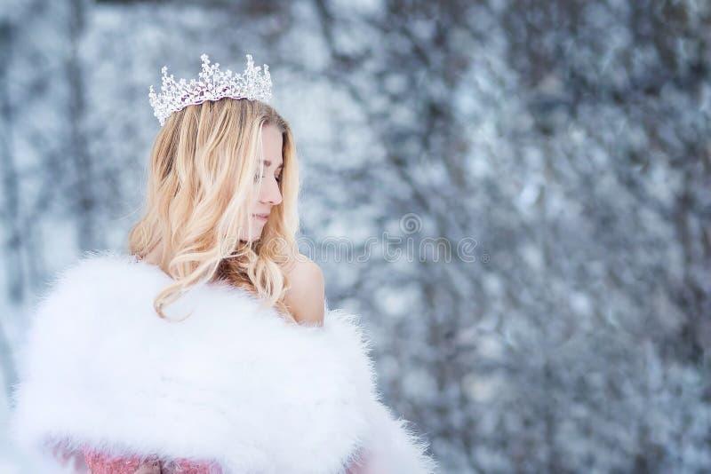 Reina Nevado, princesa con la corona Cuento de hadas fotos de archivo