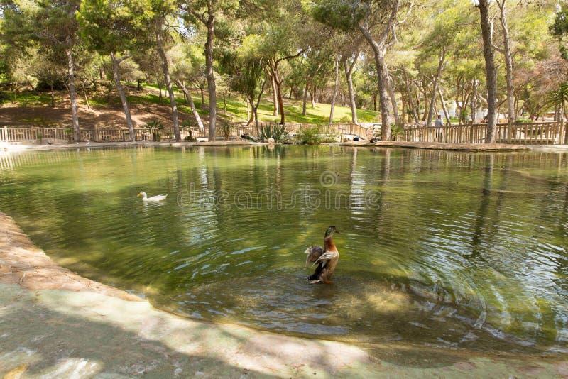 Reina Sofia Park Guardamar del Segura Spain-toeristische attractie stock fotografie