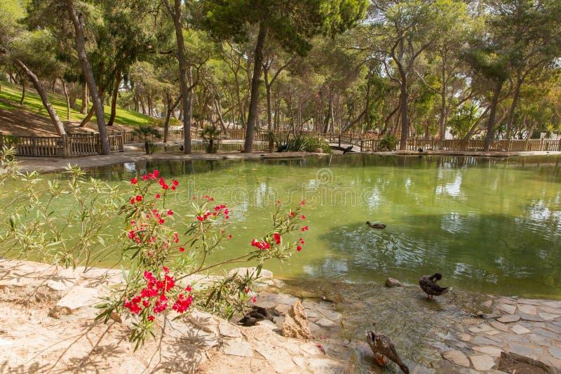 Reina Sofia Park Guardamar del Segura Spain-toeristische attractie stock afbeelding