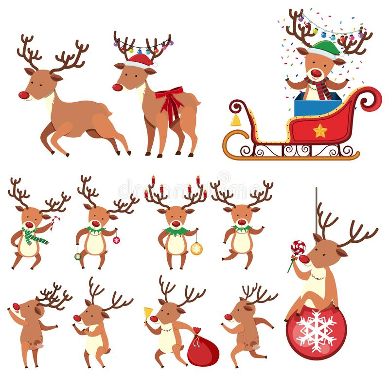 Reindeer in Different Action on White Background. Illustration royalty free illustration