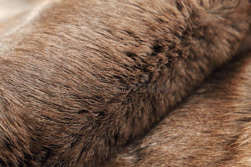 Reindeer fur, background. Reindeer fur, close up background royalty free stock image