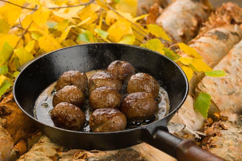 Download Reindeer meatballs stock photo. Image of iron, birch - 23793832