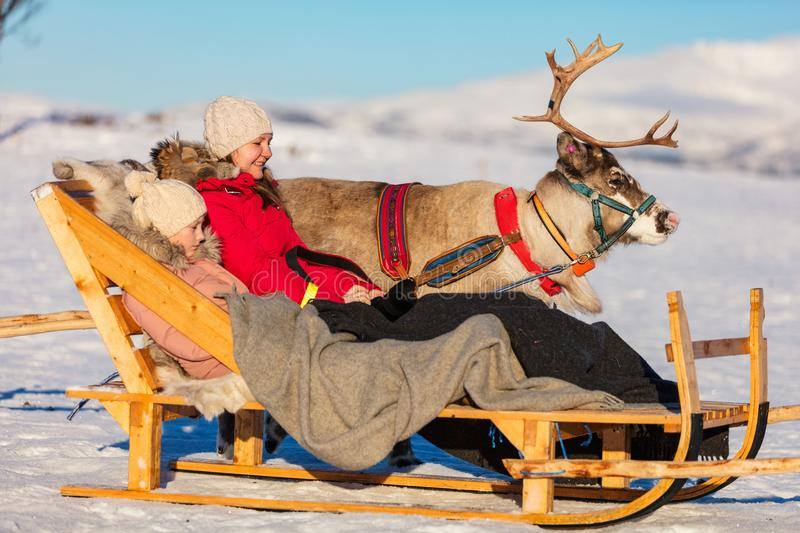 Reindeer safari. Family of mother and her daughter at reindeer safari on sunny winter day in Northern Norway stock photos