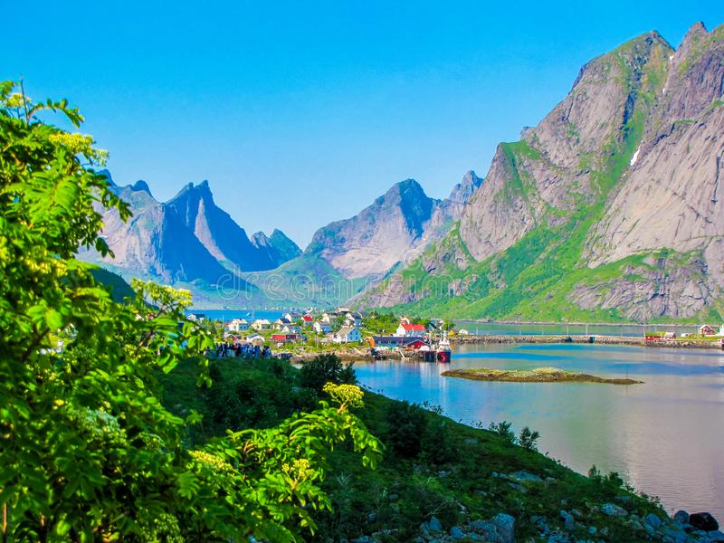 Reine, острова Lofoten, Норвегия стоковые фото