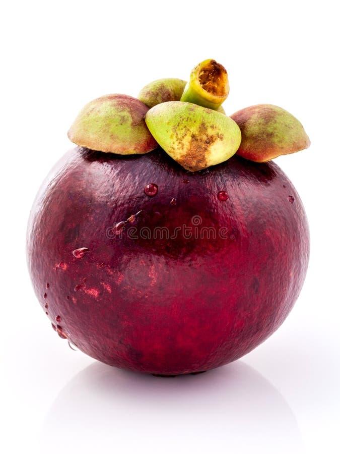 Reine de mangoustans des fruits thaïlandais Isolat mûr de fruits de mangoustan images stock