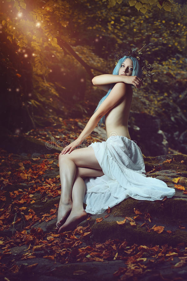 Reine des fées image stock