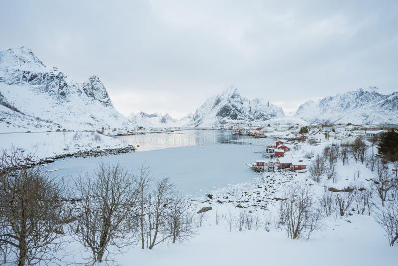 Reine wioska na Lofoten wyspach, Norwegia, piękny widok wioska zdjęcia royalty free