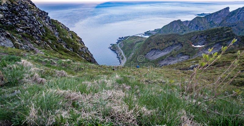 Reinebrinen, Норвегия - 1-ое июня 2016: Дорога, который нужно взобраться для достижения известного верхнего пикового Reinbringen, стоковое фото rf