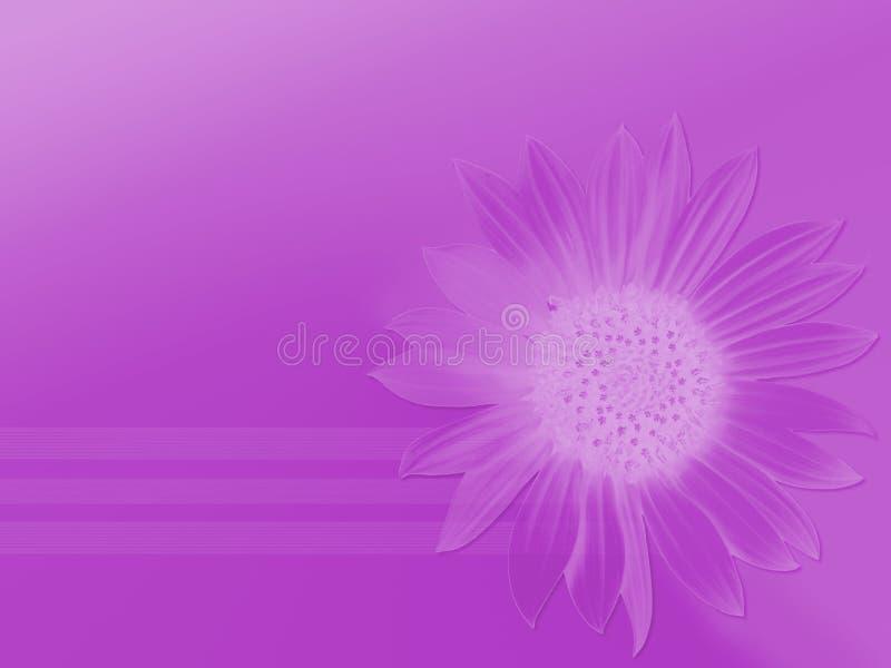 Reines Purpur vektor abbildung