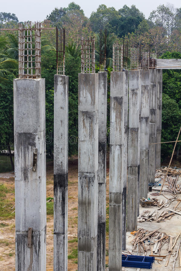 Pillar Concrete Buildings : Reinforced concrete pillars forest stock photo image of