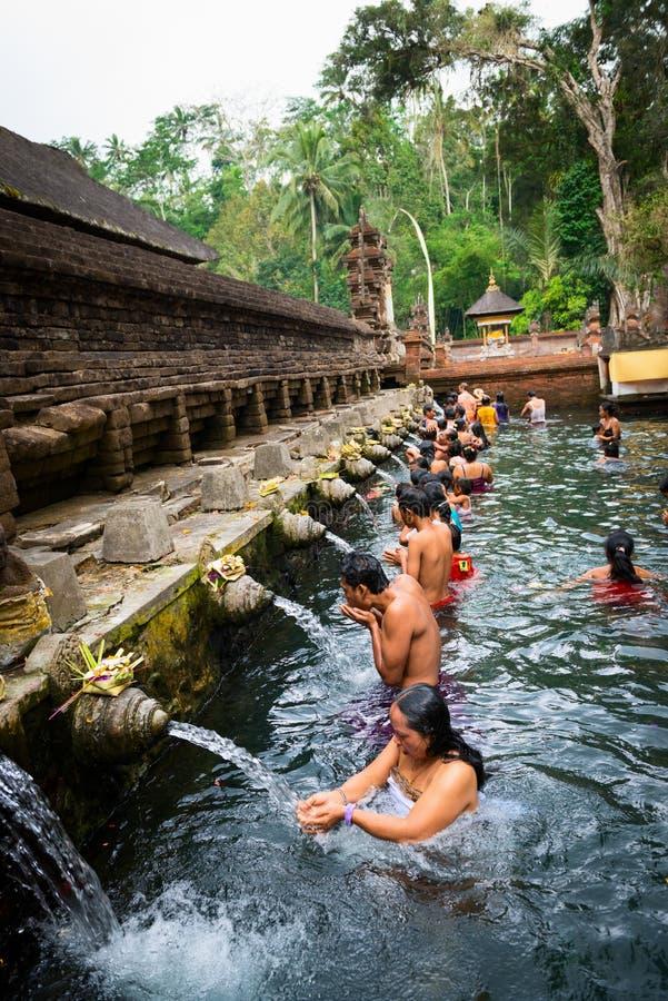 Reiniging in heilig heilig bronwater, Bali stock afbeelding