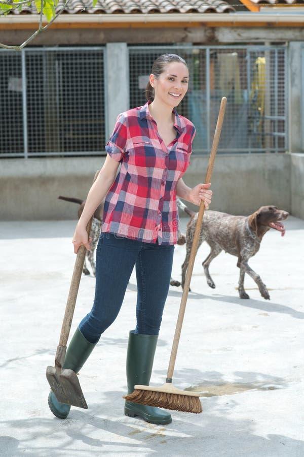 Reinigungszeit für Hundehüttenassistenten lizenzfreie stockbilder