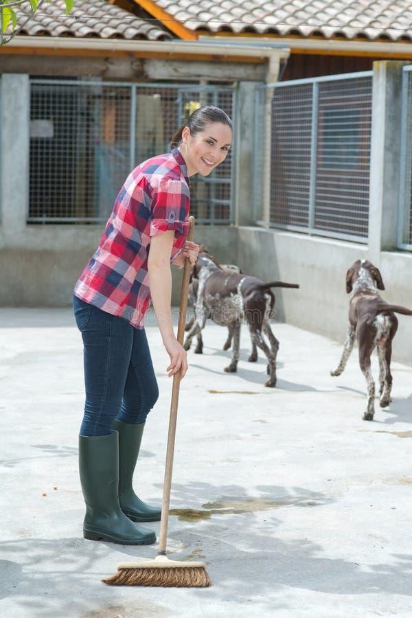 Reinigungszeit für Hundehüttenassistenten stockfotos