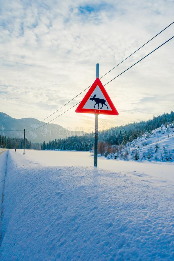 Reinly, Noruega - 26 de marzo de 2018: Vista al aire libre de la muestra de la travesía de los alces en un lado durante invierno  fotos de archivo