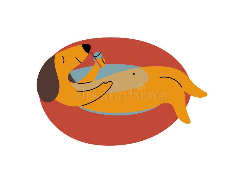 Reinrassiger Brown-Dachshund-Hund, der auf aufblasbaren Innenring, lustiger spielerischer Haustier-Tier-Zeichentrickfilm-Figur-Ve lizenzfreie abbildung