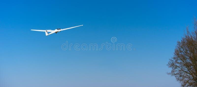 Reinweiß-Segelflugzeug im klaren blauen Himmel, der über den Treetop fliegt Konzept des Erfolgs, Leistung des hohen Ziels stockfoto