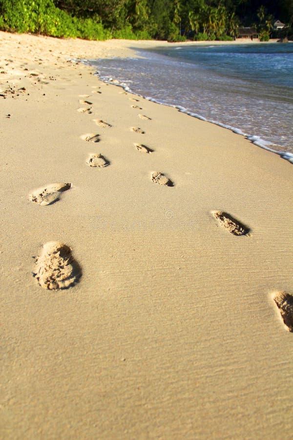 Download Reis stock foto. Afbeelding bestaande uit eenzaam, zand - 39108988