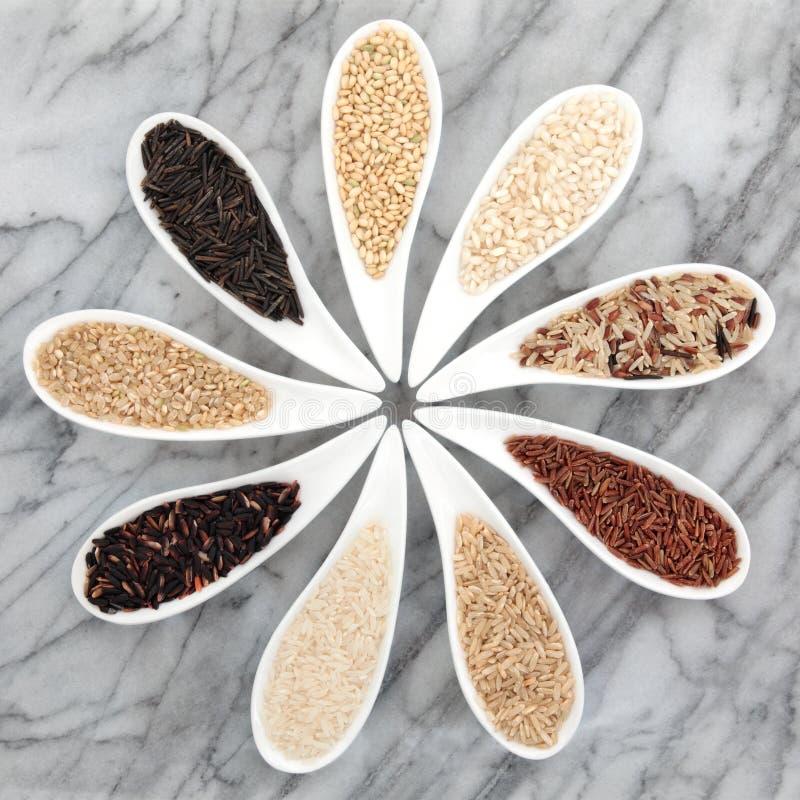Reis-Arten stockbild