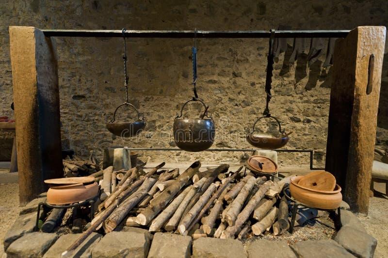 Reis cozinha do castelo de Dôvar fotos de stock