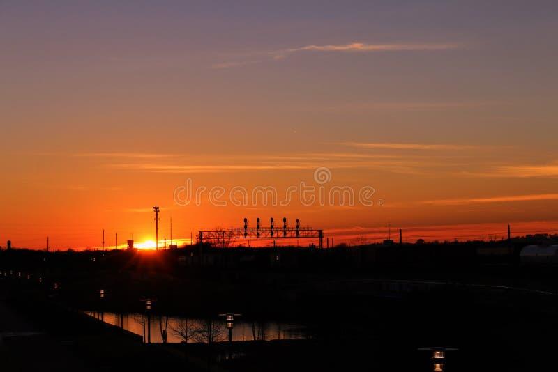 Reis in de zonsondergang royalty-vrije stock afbeeldingen