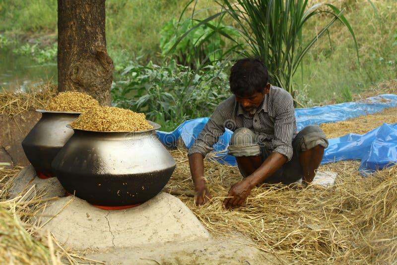 Reis, der im Armband-Dorf kocht stockfoto