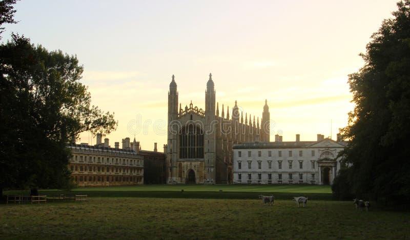 Reis Faculdade Cambridge fotos de stock royalty free