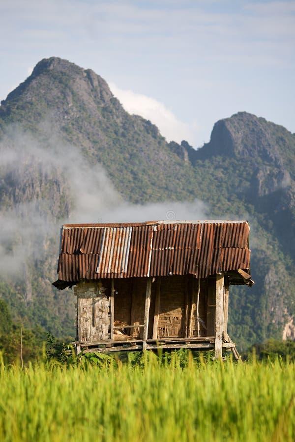 Reis-Hütte stockfotos