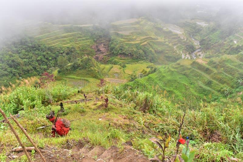 Download Reis-Terrassen - Banaue, Philippinen Stockfoto - Bild von abbildung, ablage: 106800862