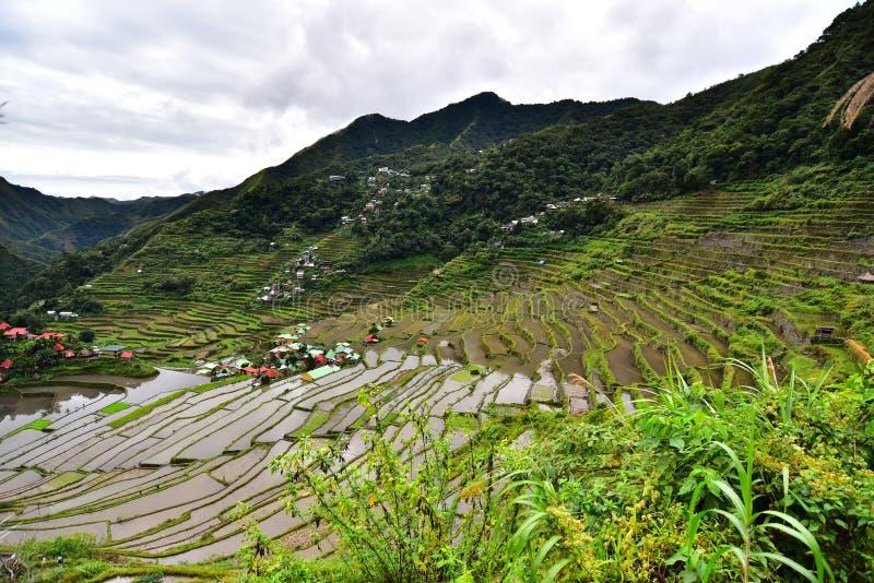 Download Reis-Terrassen - Batad, Philippinen Stockbild - Bild von abgabe, schön: 106801141
