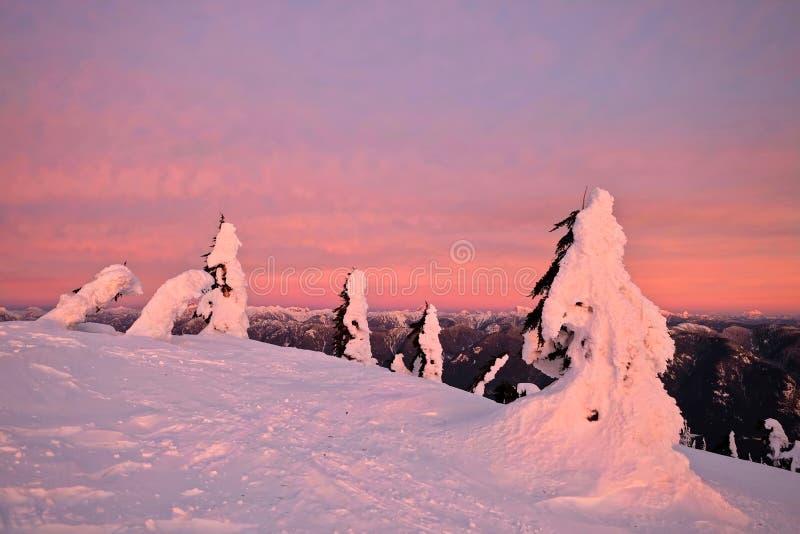 Reise-Britisch-Columbia Nord-Vancouver-Skiort auf Berg Seymour lizenzfreie stockbilder