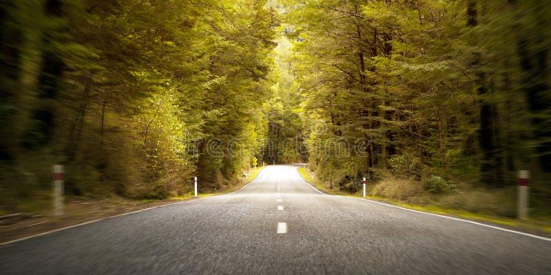 Reise-Fahrtroute-Reise-Landschaftsländliches Freiheits-Konzept stockbilder