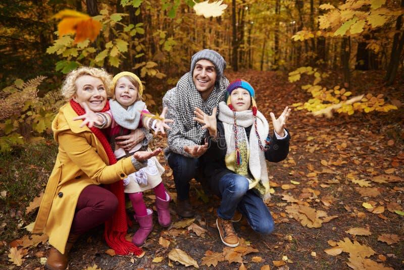Reise zum Wald während des Herbstes lizenzfreies stockfoto