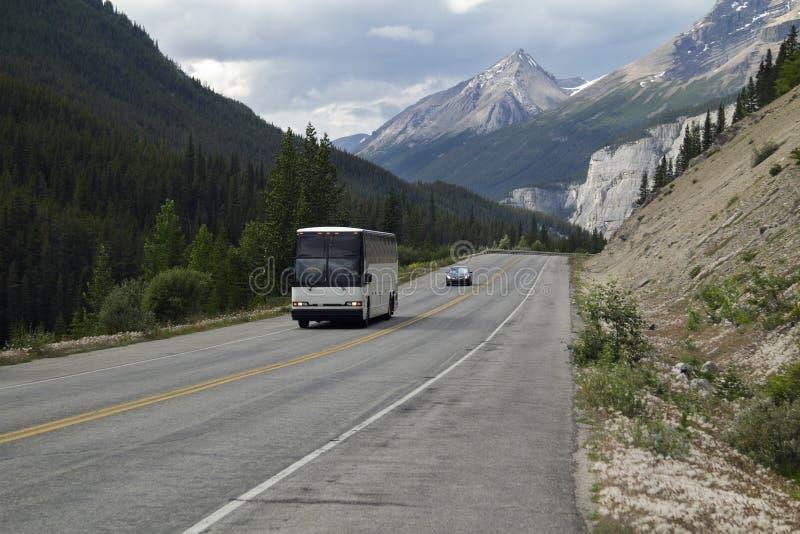 Reisebus in Rocky Mountains - Jasper National Park stockbilder
