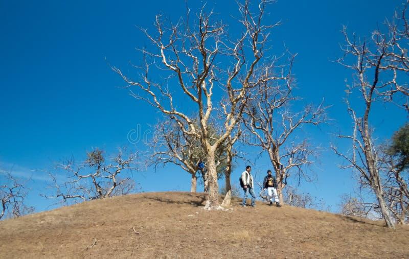 Reisegesellschaft, die hinunter Hügel an den schönen Wintertagen geht stockfotografie