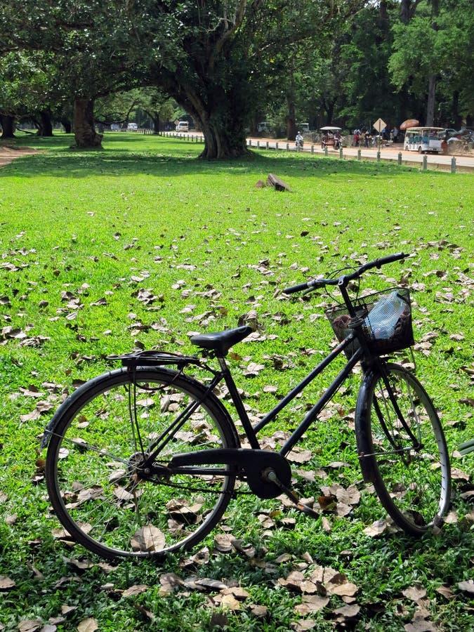 Download Reisen der Fahrräder stockbild. Bild von geparkt, standplatz - 27726001