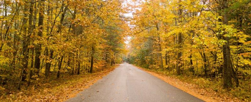 Reisen einer ländliche Landstraße zwischen den Bäumen, die helle Fallfarbe als Winteransätze zeigen lizenzfreie stockfotos