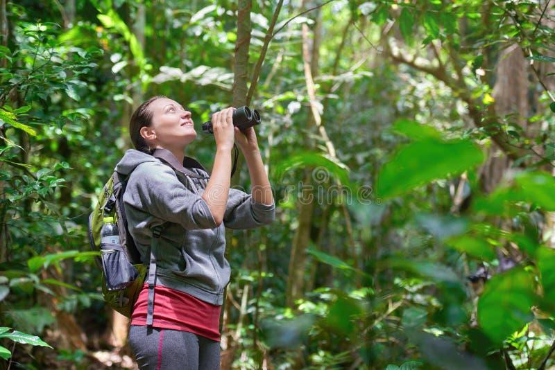 Reisender, der durch wilde Vögel der Ferngläser im Dschungel aufpasst stockfotos