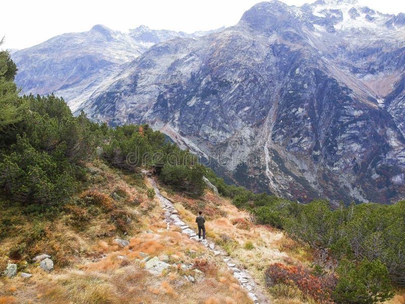 Reisender, der herauf Berg im Herbst geht stockfotografie