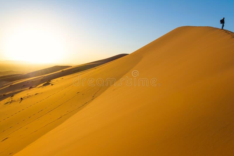 Reisender in der Wüste, aktives Trekking der jungen Frau in der heißen sandigen Wildnis, drastischer Sonnenuntergang lizenzfreie stockbilder